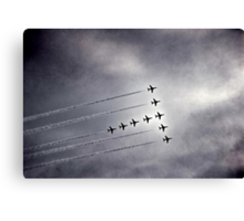 In Formation Canvas Print