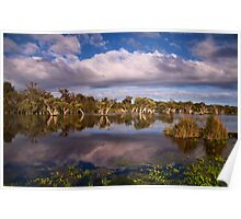 """""""Swampland Reflections"""" Poster"""