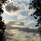 Cloudy sky with silhouette of trees and Glasgow skyline  by AlbertLake