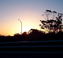 Freeway Sunset by Robert Phillips