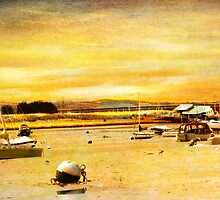 Moorings on Exe River by dmacwill