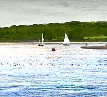 Bookmark: Exe Estuary (Devon) by dmacwill