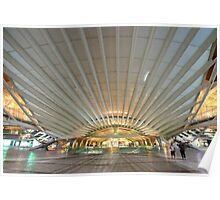 the canopy. Gare do Oriente. Lisbon Poster