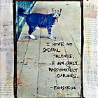 Curious Cat - Mixed Media Photography by DanielleQ