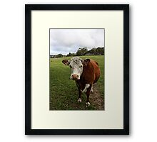 Outstanding In Their Field Framed Print