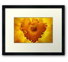 Heart Of Hope Framed Print