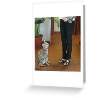 Cute Savannah Greeting Card
