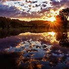 Early Morning Sun by Kathy Weaver