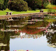Water Gardens - Sigurtà by sstarlightss