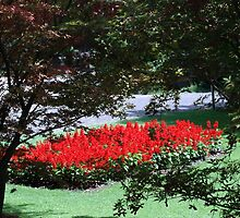 Red Flowerbed in a Green Carpet by sstarlightss