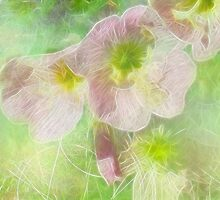 Pollen by Diane Johnson-Mosley