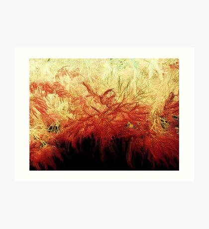 Fire Sage Art Print
