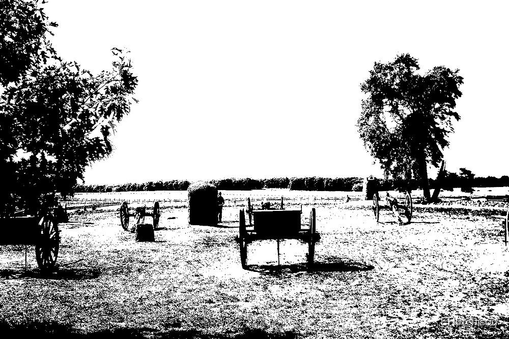 Pickett's Field by EHutchison