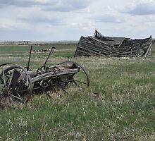Farming history by worretphoto