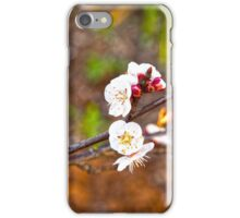 Last little blossoms... iPhone Case/Skin