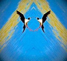 A Circle of Bird Love by Jean Willow