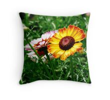 The Prize Winner Throw Pillow