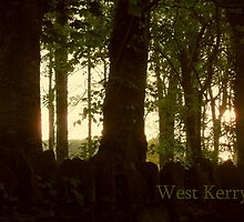 West Kerry by mairead62