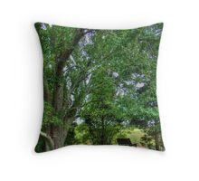 A Place to Sit a Spell Throw Pillow
