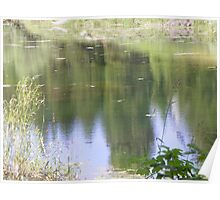 reflections - Trout Farm, Malheur NF, Prairie City, OR Poster