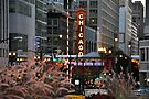 Chicago Theater by Polly Greathouse