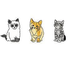 cat tumblr drawings  Photographic Print
