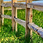 Split Rail  by Jim  Egner