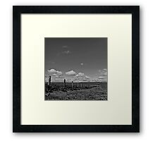 Where sheep become clouds Framed Print