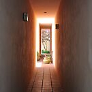 Napa Alley by Polly Greathouse