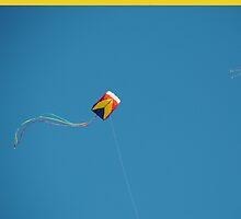 Go Fly A Kite V by Christopher Colletta