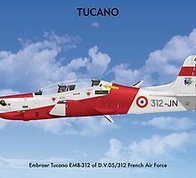 Embraer Tucano France 1 by Claveworks