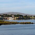 Irish Fishing Village by ACBPhotos
