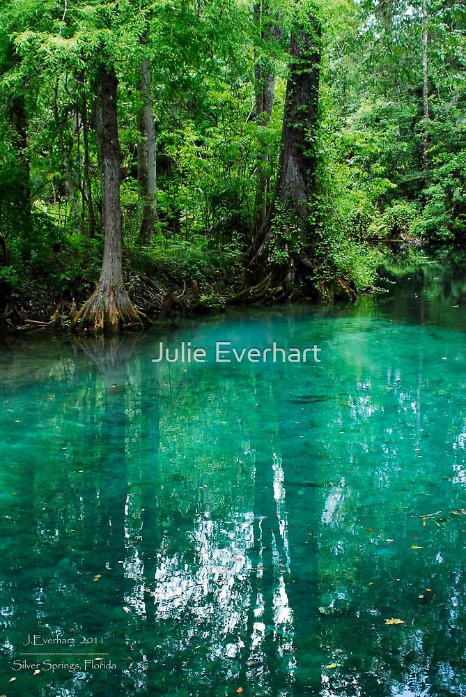 Silver Springs Florida by Julie Everhart