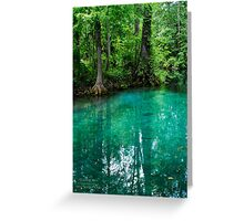 Silver Springs Florida Greeting Card