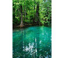 Silver Springs Florida Photographic Print