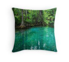 Silver Springs Florida Throw Pillow