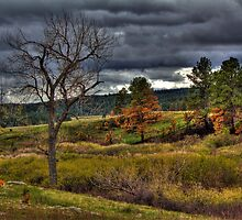 Before the Storm by Jim  Egner