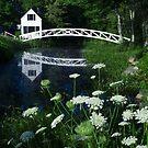 Somesville Footbridge by Mark Van Scyoc