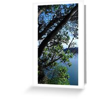 Puget Sound Through the Trees Greeting Card
