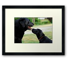 Kisses for Cole Framed Print