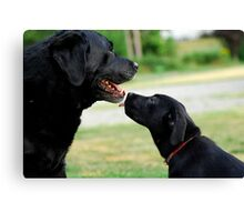 Kisses for Cole Canvas Print