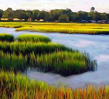 Marsh View by suzannem73