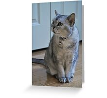 Unbelievable Oriental Bicolor Greeting Card