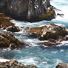 Monterey Water by Polly Greathouse