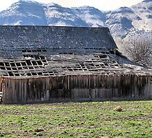 Old Barn Mitchel Oregon by Don Siebel