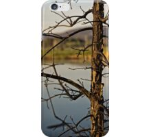 Early Morning Spring at Lake Burley Griffin in Canberra/ACT/Australia (1) iPhone Case/Skin