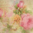 la belle rose  by jules572