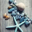 Sea Stars and Sea Stones by CarlyMarie