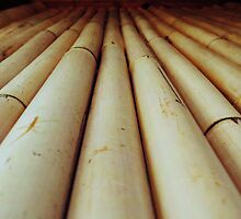A Road of Bamboo by MitsukaiKogun