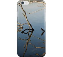 Driftwood at an Early Morning Spring at Lake Burley Griffin in Canberra/ACT/Australia (1) iPhone Case/Skin
